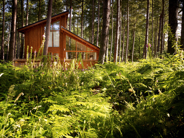 Golden Oak cabins feature a hot tub and wood-burner