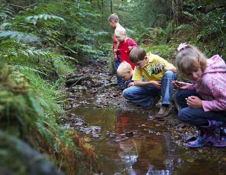 Children learn about the forest on the Forest Ranger activity